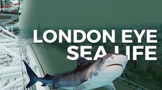 LONDON EYE | SEA LIFE | PASSEANDO EM LONDRES