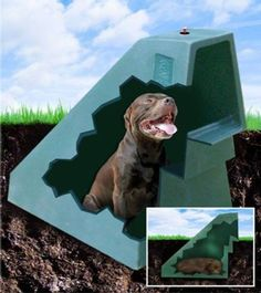 A Dog House Heated and Cooled Using Geothermal Energy DogEden