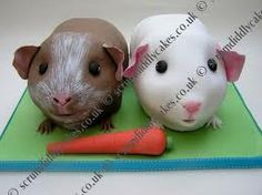 guinea pig cake topper - Google Search---ears