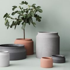 Concrete planters in dark gray, light gray, and ochre by TRNK; from $37 each. trnk-nyc.com