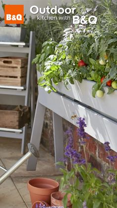 With B&Q you can transform a winter worn garden in to a beautiful oasis. Enjoy watching your garden flourish this Spring, by planting colourful flowers and growing organic fruit and vegetables.