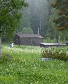 Fäbodstugan i Vallavallen, tillhörande Ystegårn i Hillsta, Forsa Hälsingland.