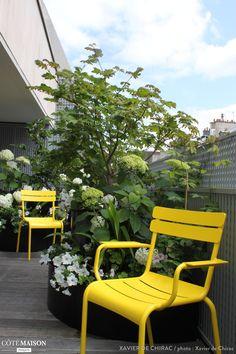 Aménagement paysager d\'une terrasse à Neuilly-sur-Seine... | L\'Aurey ...