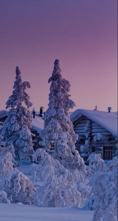 Wintry glow of dawn in Saariselka, northern Finland • Carlos LN Photography