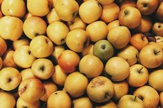 Apples from Black Diamond Farm, Finger Lakes, New York