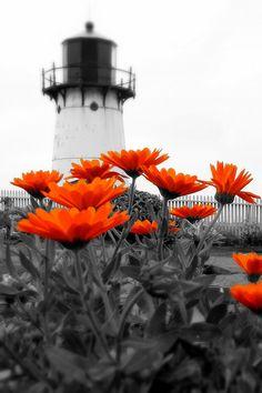 Point Montara Lighthouse, Half Moon Bay, California / splash of orange Color Splash, Color Pop, Half Moon Bay, Beacon Of Light, Orange Crush, Belle Photo, My Favorite Color, Favorite Things, Black And White Photography
