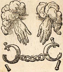 [Paradin, Claude, 1557: Nec fas est, nec posse reor.]