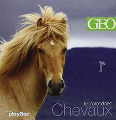 Looks familiar - An Icelandic horse  or Le cheval islandais - as a pin-up on the front page of a French calendar for 2016. - I love, I love, I love my calendar horse...
