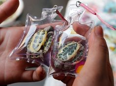 Revolt against this new disgraceful fashion jewelry in China: live animals in a plastic sealed bag as a key ring.