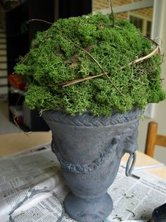 Call me crazy, but I love a good urn of moss. There's something so English Garden-esque about it, and I'm a fool for English Garden-esque. I realize this picture has already been posted…
