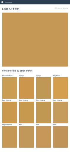 Leap Of Faith, Benjamin Moore. Click the image to see similiar colors by other brands.