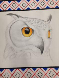 Owl drawing by Chloe Worswick
