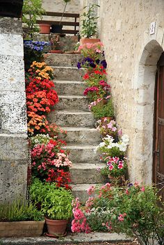 France- flower pot stairway - A collection of pots on stairs, porches, decks, or to fill out spots in the garden is a great way to add color!