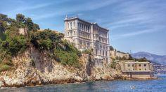 Oceanarium w Monaco to nie tylko duże akwaria z pięknymi rybami. Tu możesz pogłaskać żywego rekina, wejść do repliki batyskafu i zobaczyć fantastycznąpanoramę Monaco i Monte-Carlo z dachu budynku. Warto wydać 14 euro.