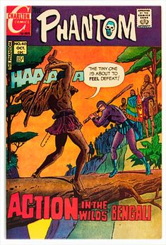 Phantom Comics, Charlton Comics, Feeling Defeated, Comics For Sale, Silver Age Comics, Happy A, Comic Covers, Water Stains, Water Damage