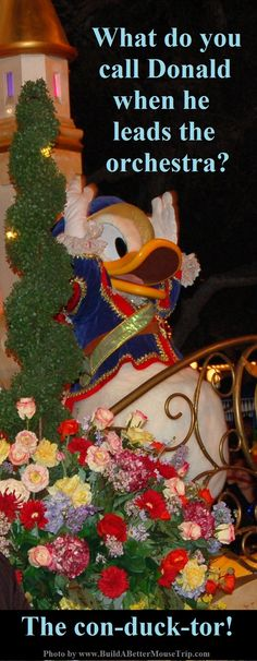 Silly Disney Joke - Q: What do you call Donald when he leads the orchestra? A: A con-duck-tor. (Photo: Donald Duck in the Parade of Dreams at Disneyland) To receive a list of 45 great #Disney World freebies see: http://www.buildabettermousetrip.com/disney-freebies/ #Disneyjokes  #DonaldDuck