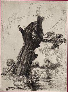 Saint Jérôme écrivant sous un saule Signé et daté au 2e état en bas vers la gauche Rembrandt f. 1648 Eau-forte et pointe sèche. 180 x 133 mm...