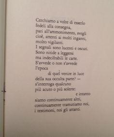 Ricerche di Mario Luzi