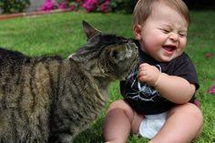 bébé et chat trop mignons 9