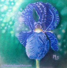 "Original oil painting / title ""Blue Iris"" on 8x8 canvas board. #art #painting #originalpainting"