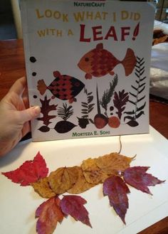 Combine this with Lois Ehlert's Leaf Man - Mrs. J in the Library's note: Pin link doesn't work and goes to an empty website. Autumn Art, Autumn Theme, Autumn Ideas, Autumn Activities, Preschool Activities, Book Activities, Fall Crafts, Kids Crafts, Tree Study