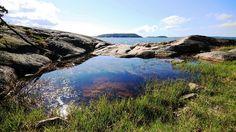 Norwegian summer:))