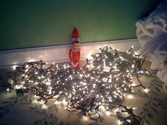 elf pulled out the Christmas lights and made a mess