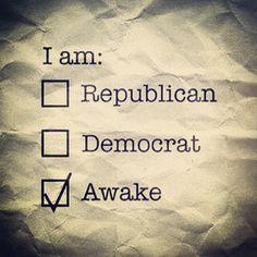 political junkie definition