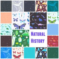 Natural History by Lizzy House for Andover Fabric