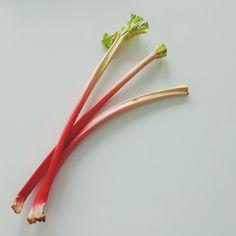 Loving rhubarb