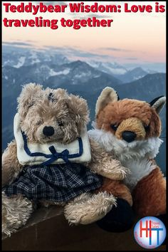 For Charlotte & FoxFury, the adventure of traveling together & the wonder & joy of seeing new places, meeting new people, and learning new things is magical. #teddybears #teddybearlove #lovetips #stuffies #travel #traveltips #teddybearwisdom Family Cruise, Family Travel, Travel Advice, Travel Tips, Adventure Bucket List, Best Places To Travel, Meeting New People, World Traveler, Storytelling