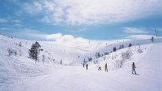 Cross-country skiing is somewhat of a national sport in Finland. It is extremely good for the body and mind, with beautiful winter scenery serving as an inspiring backdrop.