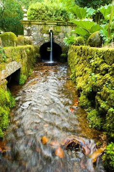 Places To Travel, Places To Visit, Go Around, Terra, Garden Bridge, Beautiful Places, Amazing Places, The Good Place, Waterfall