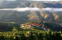 Portugal's Best Wine Hotels - via Nelson Carvalheiro 11.06.2015 | Travel through Portugal through wine! Ahead of you is a day of Portuguese Wine discovery, always accompanied by quaint and candid Portuguese traditional cuisine. Photo: Quinta Nova, Sabrosa - Douro Valley