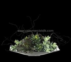 Commercial Silk Int'l is a leading manufacturer of large and small faux succulents and cactus plants. Hand crafted from high quality faux succulents, this arrangement includes succulent plantss and comes arranged on a lovely aluminum plate. Fake Succulent Plants, Faux Succulents, Planting Succulents, Cactus Plants, Artificial Indoor Plants, Artificial Succulents, Fake Palm Tree, Wood Trunk, Silk Tree