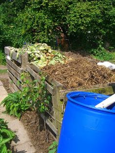entry from Allotment Garden: July allotment photographs. Is this an award achieving allotment? Allotment Plan, Allotment Gardening, Allotments, Judges, Places Of Interest, Permaculture, Garden Hose, Garden Ideas, Cool Designs