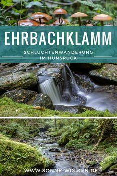 Die Ehrbachklamm – Schluchtenwanderung im Hunsrück