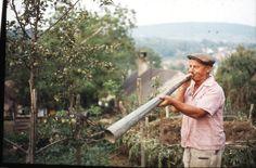 Balogh Ferenc (Balatonhenye) Baseball