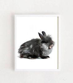 Rabbit Print Printable Art Nursery Print Black And White Nursery Prints, Nursery Art, Printable Art, Printables, Rabbit, Black And White, Cats, Animals, Vintage