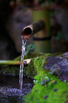 shishi-odoshi (bamboo fountain in Japanese Zen garden) Image Zen, Water Features In The Garden, Garden Fountains, Fountain Garden, Water Garden, Belle Photo, Land Scape, Garden Inspiration, Outdoor Gardens