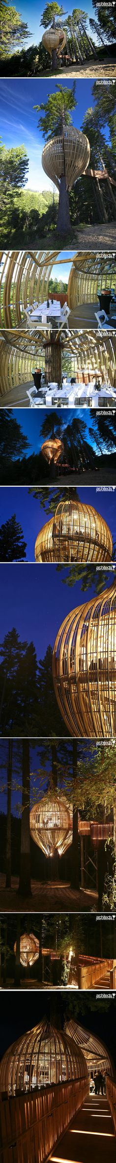 Yellow Treehouse Restaurant, New Zealand // designed by architects Peter Eising and Lucy Gauntlett from Pacific Environments Architects.