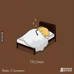 Because everyone needs a sleeping taco. Funny Shit, Funny Puns, The Funny, Hilarious, Funny Stuff, Funny Humor, Spanish Jokes, Funny Spanish Memes, Funny Images