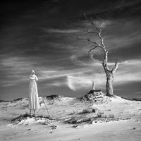 Daydream  By: Dariusz Klimczak