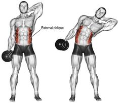 An isolation exercise. Target muscles: Internal and External Obliques. Synergistic muscles: Quadratus Lumborum Psoas Major Iliocastalis Lumborum and Iliocastalis Thoracis (all of which are deep core muscles). Note: Keep the dumbbell Fitness Workouts, Weight Training Workouts, Gym Workout Tips, Workout Videos, At Home Workouts, Exercise Workouts, Body Weight Training, Oblique Workout, Dumbbell Workout