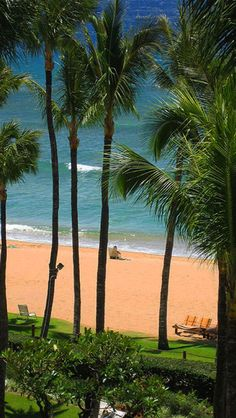 Where's the best place to stay on Maui? photo: james temple at http://boomerinas.com/2012/06/kaanapali-beach-on-maui/