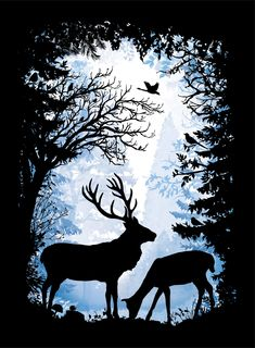 Illustration by Laura Barrett - Mendola Artists Ltd - New Ideas Silhouette Painting, Animal Silhouette, Forest Silhouette, Hirsch Silhouette, Animal Stencil, Deer Art, Shadow Art, Art Mural, Vector Art