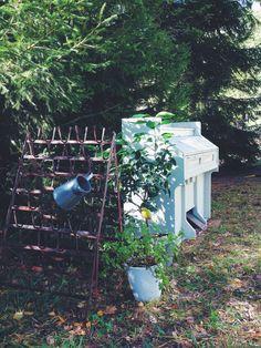 Den gamla och trasiga orgeln har fått flytta ut och till sommarn planerar vi att plantera i den. Det kan bli super fint! Den gör sig väldigt bra här ute ifall man vill spela en truddelutt.