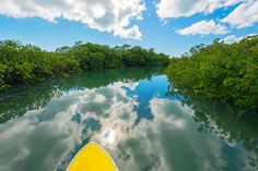 Stand-up Paddle Boarding - Visit Turks and Caicos Islands