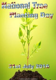 National-Tree-Planting-Day-2016.jpg (610×865)