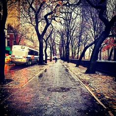 Rainy winter day near The Pierre Hotel Central Park NYC